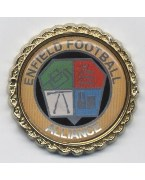 G. A. Roberts Enfield Football Alliance League