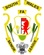 SOUTH WALES FA SENIOR LEAGUE